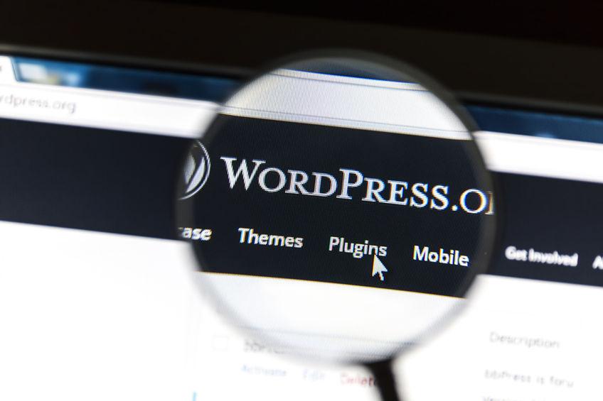 WordPressSecurity